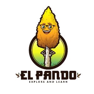El Pando Pte Ltd